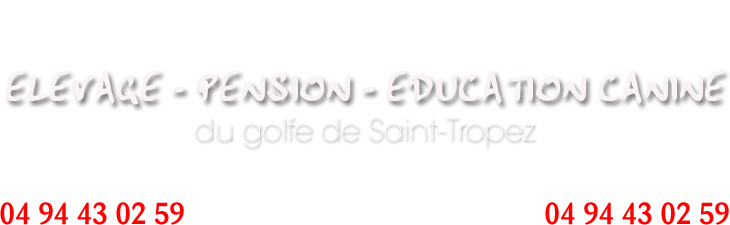 ELEVAGE - PENSION - EDUCATION CANINE du Golfe de Saint-Tropez - VAR 83